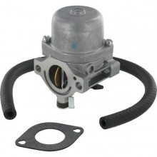 Carburateur Briggs & Stratton 590399