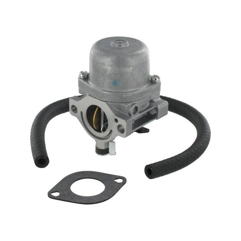 Carburateur Briggs & Stratton 590399